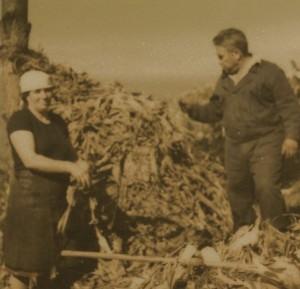 O traballo da muller foi fundamental no agro, pero non recoñecido