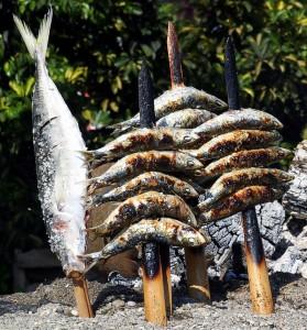 sardinas2