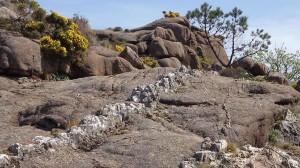 Veas de cuarzo nun macizo granítico formado hai centos de millóns de anos