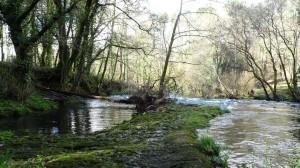 Paisaxe fluvial no río Traba achegándose á vila de Noia